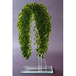 Statuetka Oliwkowe Drzewko