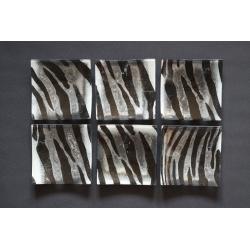 Wygięty talerz Zebra - 17x17 cm